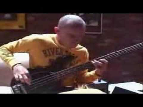 Flea on Dani California, Charlie, & Hump de Bump