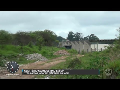 Cemitério clandestino é descoberto na Grande São Paulo | Primeiro Impacto (02/11/17)