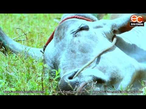 """Malayalam Short Film """"Ladam"""""""