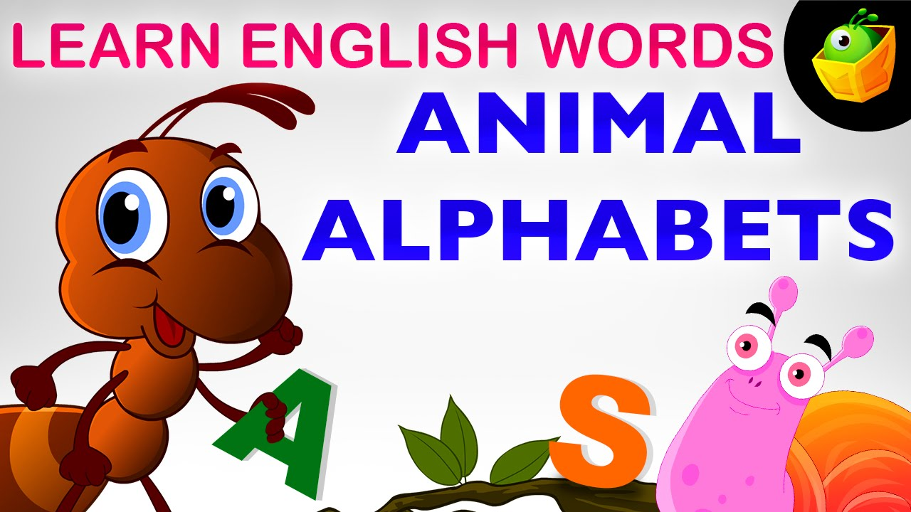 animal alphabet pre learn english words spelling