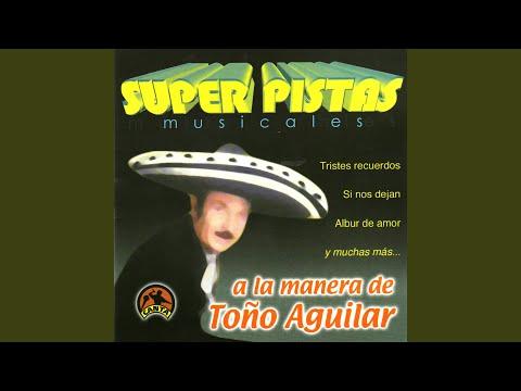 Arboles De La Barranca (Karaoke Version)