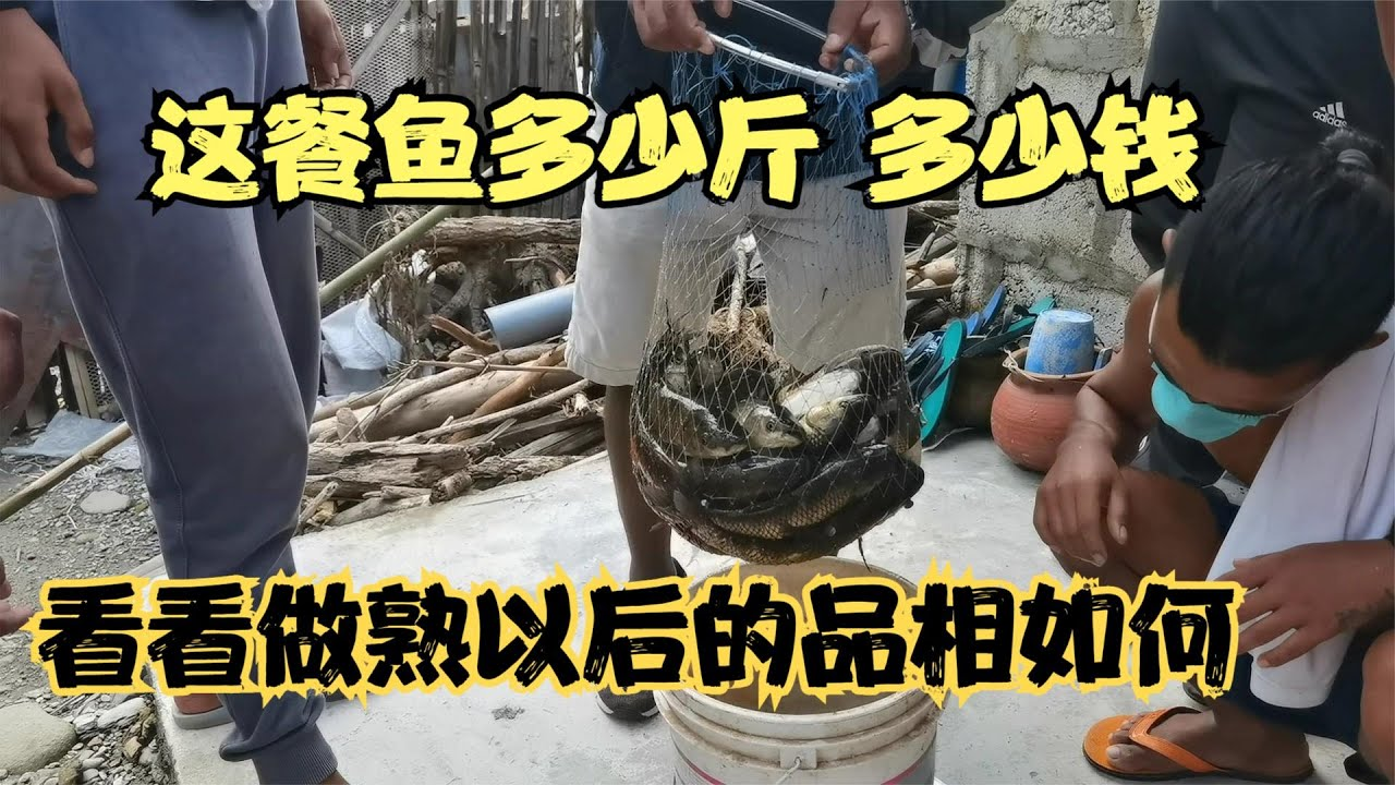 這餐魚多少斤 多少錢 看看做熟以後的品相如何