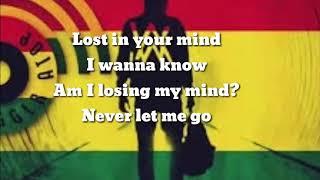 Alan Walker - Alone Lyrics  (Reggae Remix) Party Nation Subscribe & Share