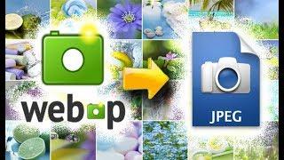 Формат WEBP Чем открыть и как конвертировать в JPG