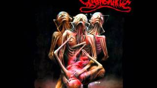 Yattering - Annihilation of Fellow Creatures