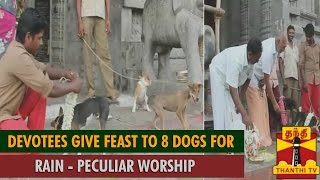 Peculiar Worship for Lord Bhairava : Devotees Give Feast to 8 Dogs for Rain - Thanthi TV