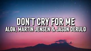 Baixar Alok, Martin Jensen & Jason Derulo - Don't Cry For Me (Lyrics Video)