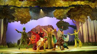 Disneyland Paris | The Forest of Enchantment | Area Music Loop