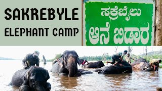 Watch Camp Elephant video
