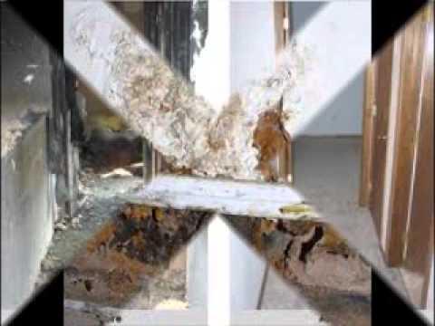 Aces Water Damage Service Camarillo (855) 360-3595