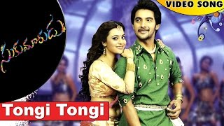 Tongi Tongi Video Song || Sukumarudu Movie Full Video Songs || Aadi, Nisha Aggarwal
