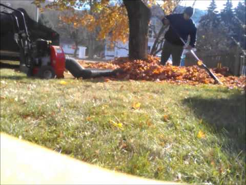 LEAF BLOWER  VACUUMING LEAVES WITH CONVERTION KIT