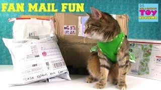 Special Surprise Fan Mail Opening Cinco De Mailo | PSToyReviews