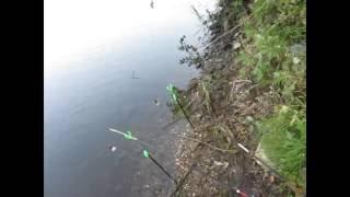 Рыбалка на коропа и карася ! Бешеный клев ! Часть 2 Sport Fishing Херсон