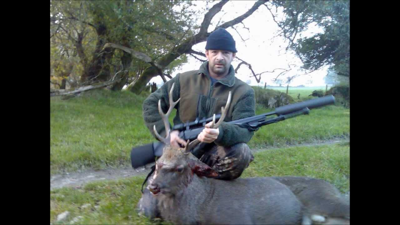 Shooting Deer In Ireland Youtube