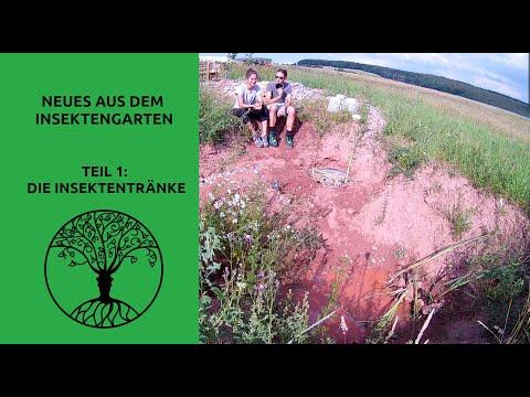 Neues aus dem Insektengarten - Teil 1: Die Insektentränke