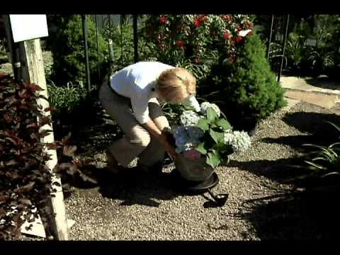 Home Gardener - New Solar Powered Garden Items