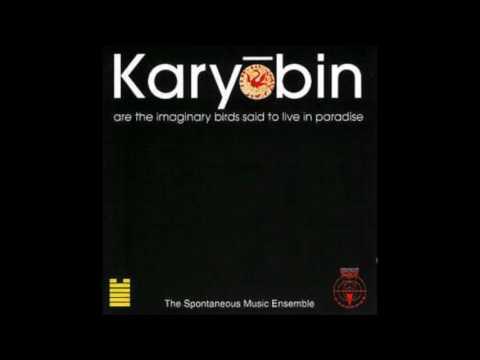 Spontaneous Music Ensemble - Karyōbin