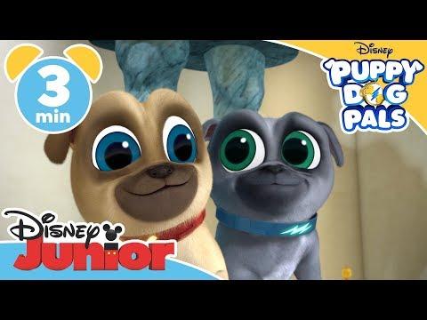 puppy-dog-pals-|-bob's-pyjamas---magical-moment-💤-|-disney-junior-uk