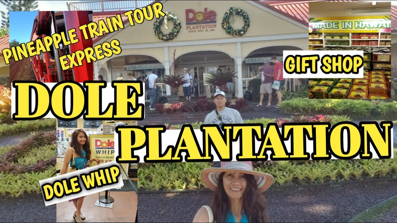 Hawaii Tour Dole Pineapple Plantation Express Train Tour Gift Shop Freya S Channel Youtube