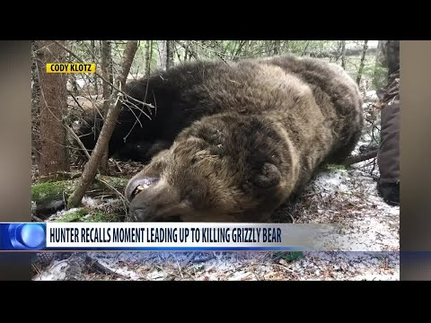 Montana elk hunter describes moment leading up to killing grizzly bear