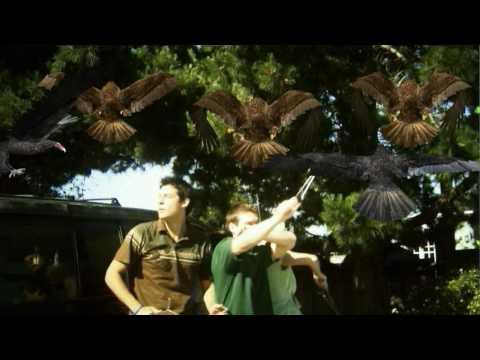 Birdemic: Shock and Terror trailer