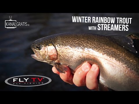 FLY TV - Winter Rainbow Trout With Streamers Ft. Mike Schmidt