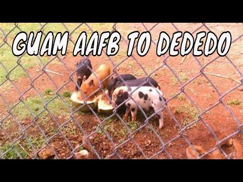VISIT GUAM Part I: AAFB to Dededo