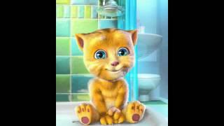 Singing cat bobby,cartoon