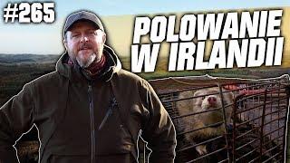 Darz Bor odc 265 - Polowanie w Irlandii