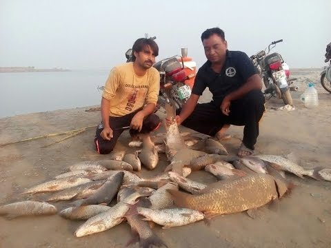 (BIG SHIKAR) Fishing In Pakistan By KhanGroup at River Chenab