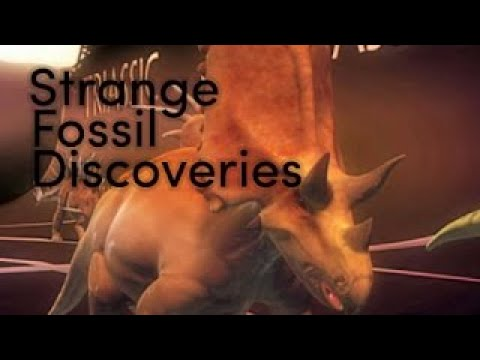 New Fossil Discoveries are Changing How We Think of Dinosaurs Weird & Unusual Prehistoric | 2017