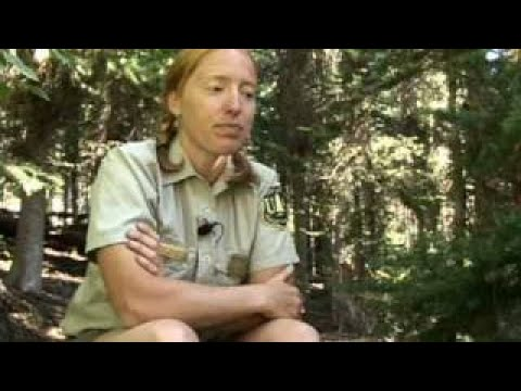 Wilderness Rangers: Keeping It Wild - The Best Documentary Ever