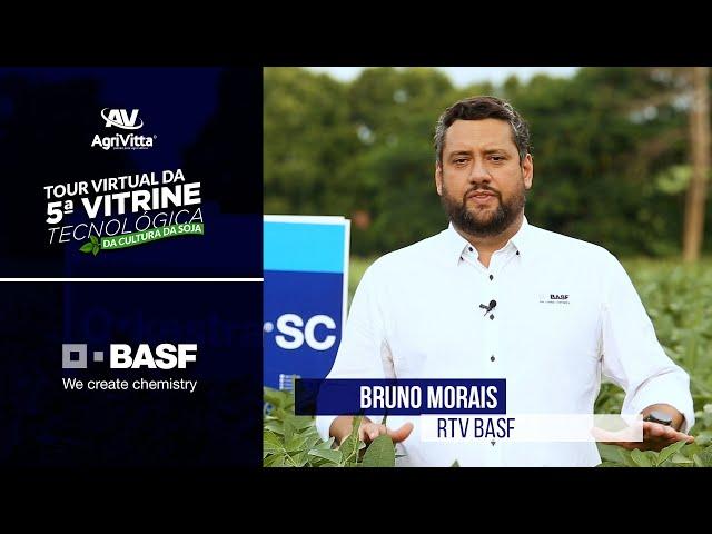 Bruno Morais, RTV BASF