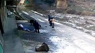 Кабан убил мужика и ранел женщину. Шокируещее видео с камеры наблюдения