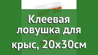 Клеевая ловушка для крыс, 20х30см (Help) обзор 80282 бренд Help производитель ЛинкГрупп ПТК (Россия)