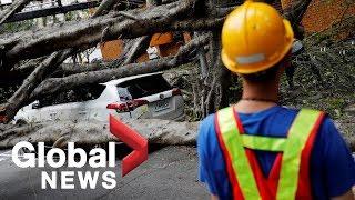 Taiwan earthquake: Footage shows moment 6.1 magnitude quake hits east coast