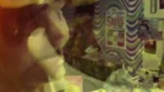 Matlock Kitchen Rules -  Satay Chicken Pizza /  Pettingrill's Secret Marinade Recipe