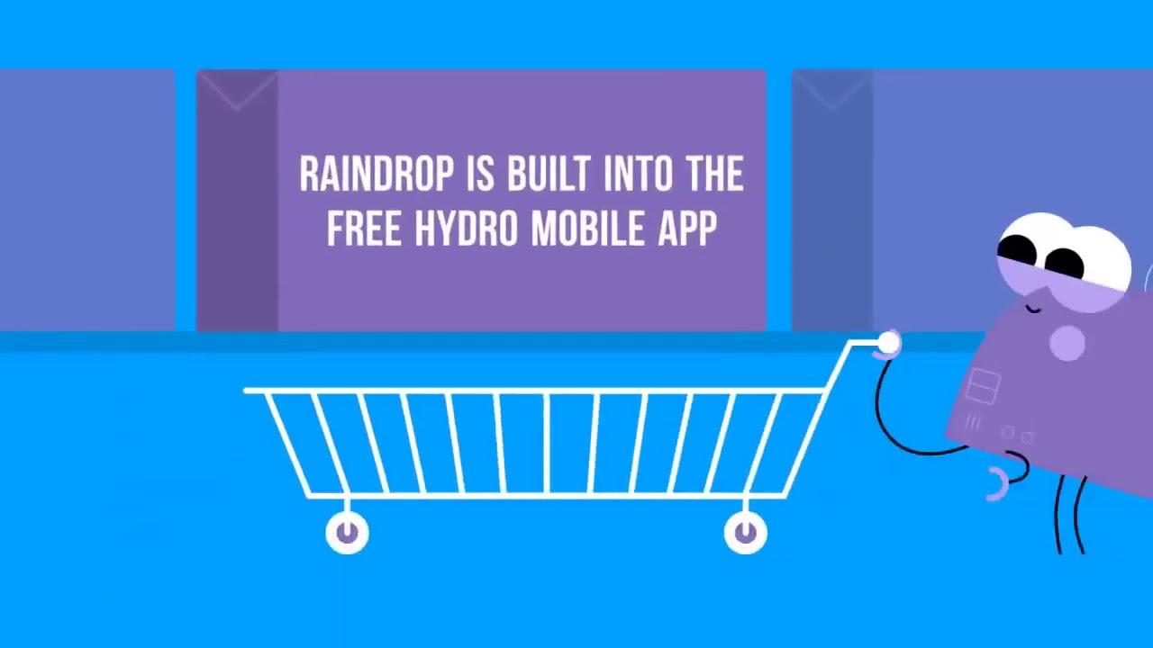 Raindrop 2FA vs Google Authenticator I Project Hydro
