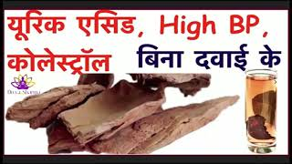 Cholesterol, High Bp, Heart Disease, Diabetes, Skin Problem.अर्जुन के छाल के फायदे । By D.H.A.F.