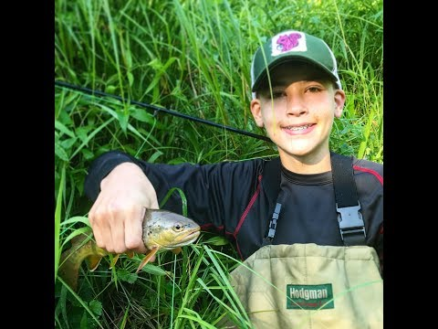 Driftless Wisconsin Fly Fishing