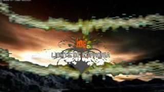 Lights Of Euphoria -True Life ( VNV Nation Remix )