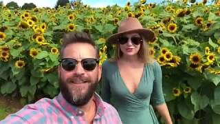 Holland Ridge Farms Sunflower Festival