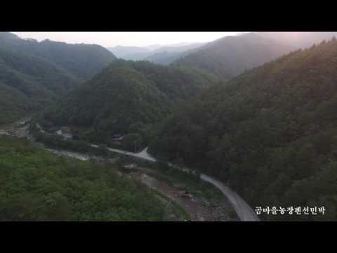 [법수치계곡]강원도계곡 양양알려지지않은계