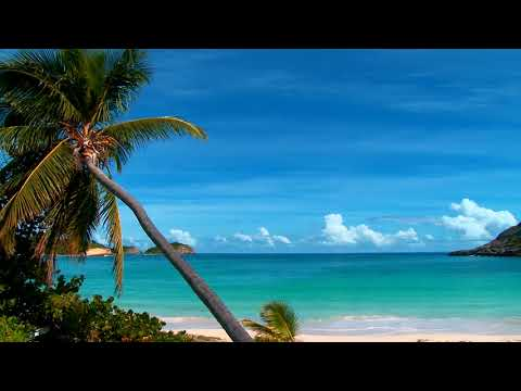"Peaceful Music, Relaxing music, Instrumental Music ""Ocean Peace"" by Tim Janis"
