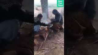 Extreme Level of Prank [] یہ کیسا مذاق ہے [] new funny Pakistani Pranks  video [] Best Fun Vines