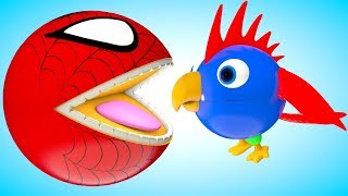 Spiderman Pacman meets a Parrot before he swimming a water slide travel on heave get a surprise toy