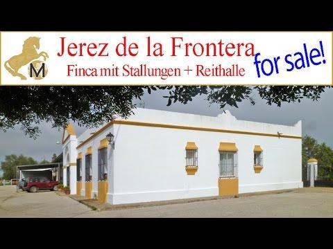 for sale: country horse property, finca, Jerez, Cadiz, Reitimmobilie zu verkaufen