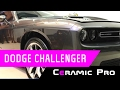 Защита поверхностей  Dodge Challenger