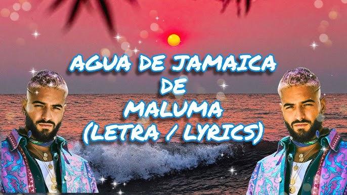 Agua De Jamaica Letra Lyrics Maluma Arleth Youtube